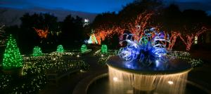 Botanical Gardens decorated as a winter wonderland for Garden Lights. Photo: Atlanta Botanical Garden