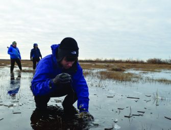 Students Look to Combat Climate Change