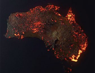 Fires Ravage Australia; What You Can Do to Help
